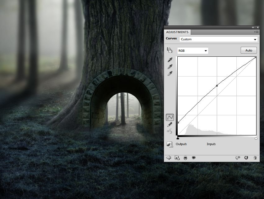 small forest curves