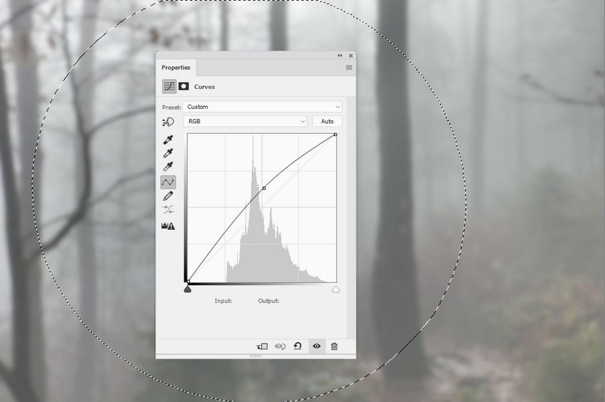 forest curves 2