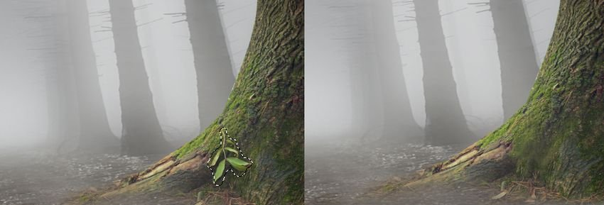 tree 3 cloning