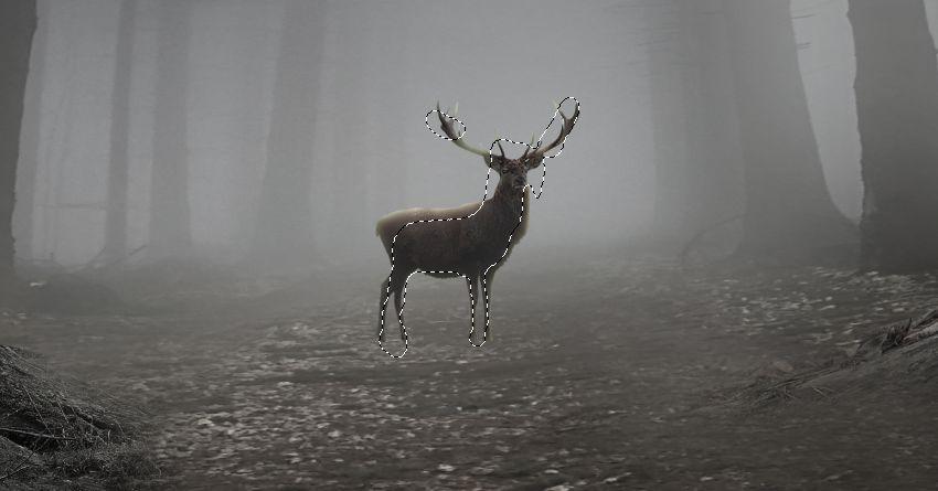 deer gaussian blur masking