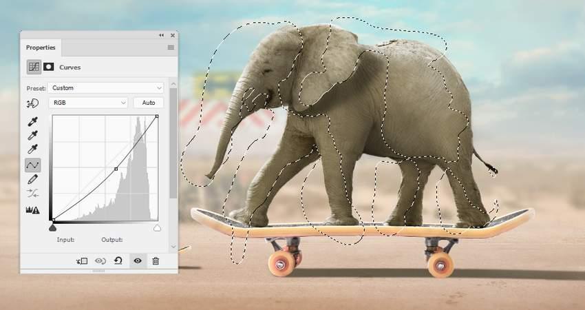 elephant curves 2