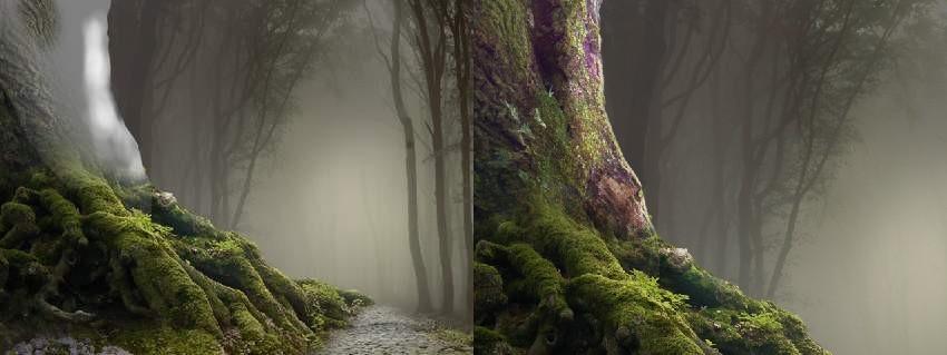 tree 3 DB