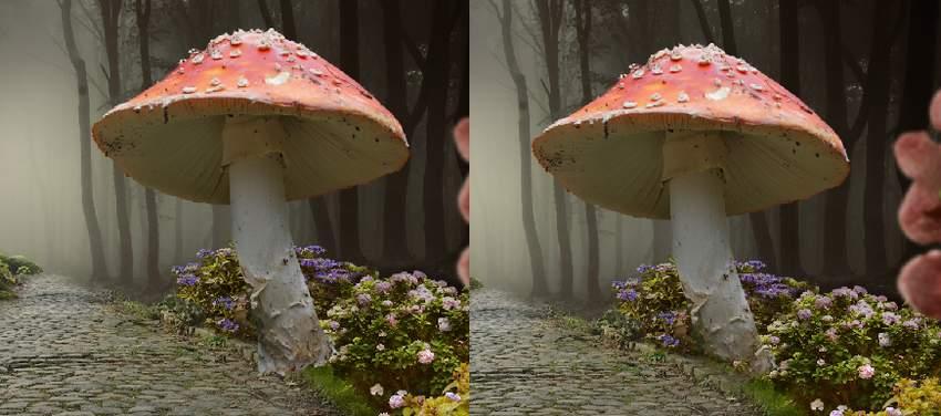 add mushroom 1
