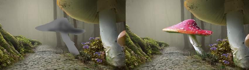 mushroom 3 DB