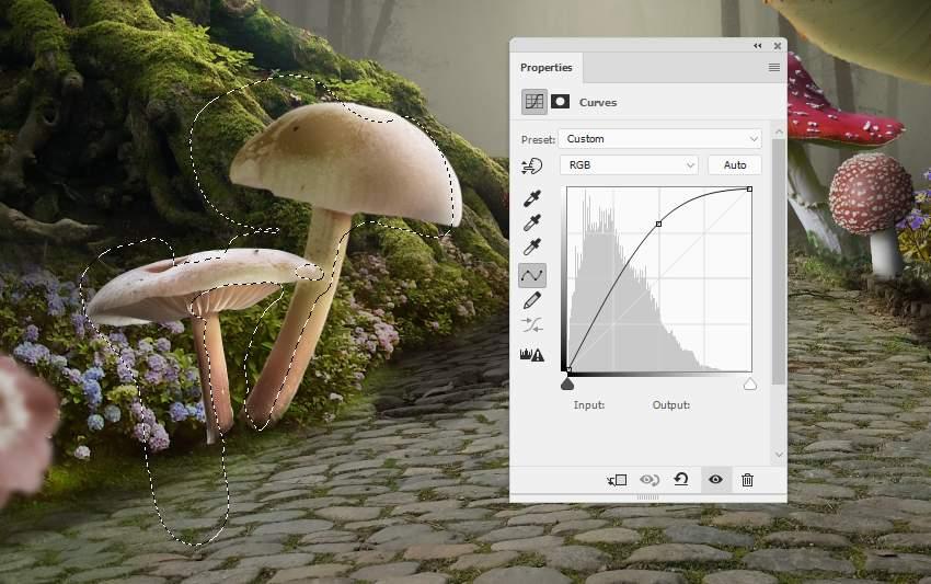 mushrooms 7 curves 2