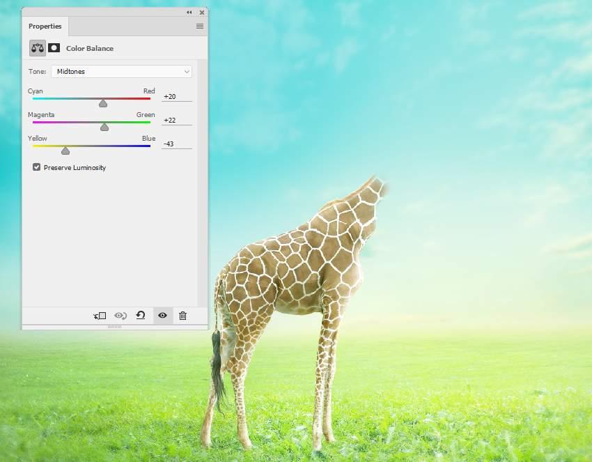 giraffe color balance