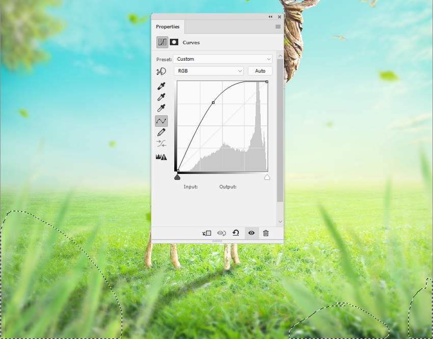 grass curves