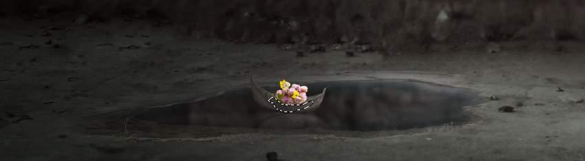 flowers masking