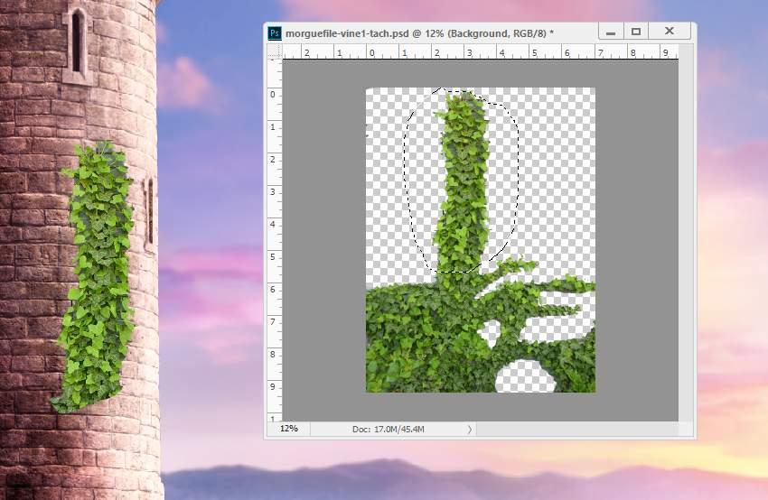 add ivy 1