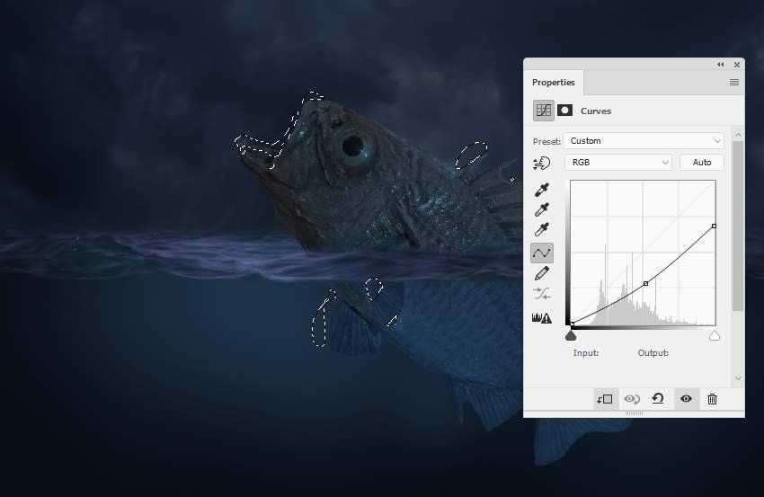 fish curves 1