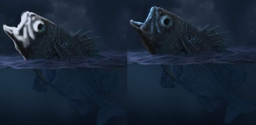 fish highlight
