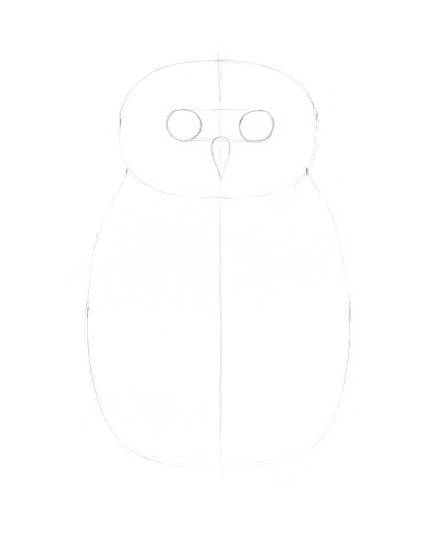 Drawing the shape of the beak