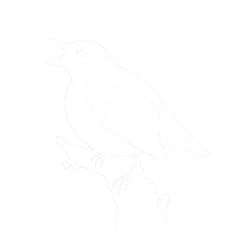 Creating a clean copy underdrawing