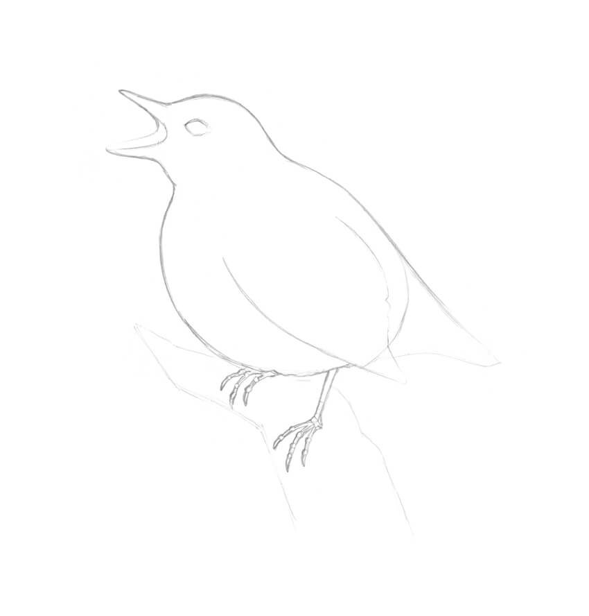 Working on the feet of the bird