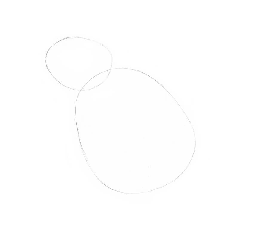 Drawing the core shapes