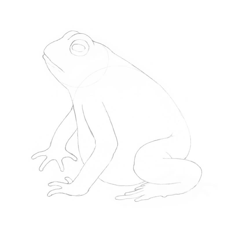 Drawing the toes
