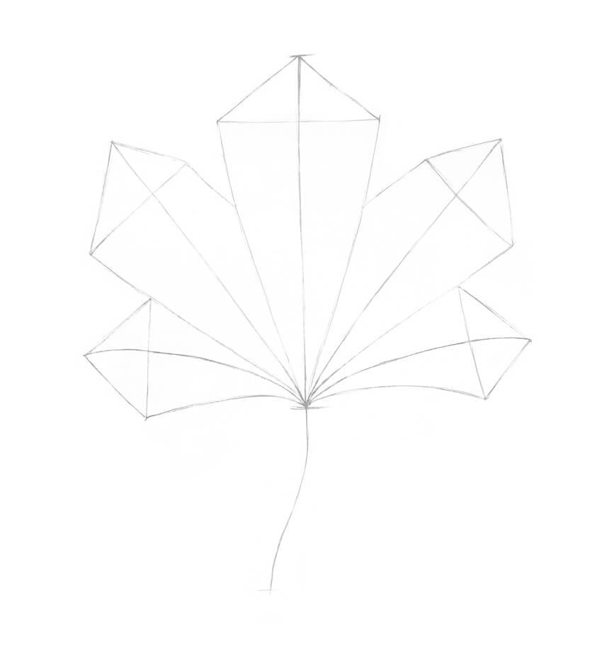 Adding new segments to the shape