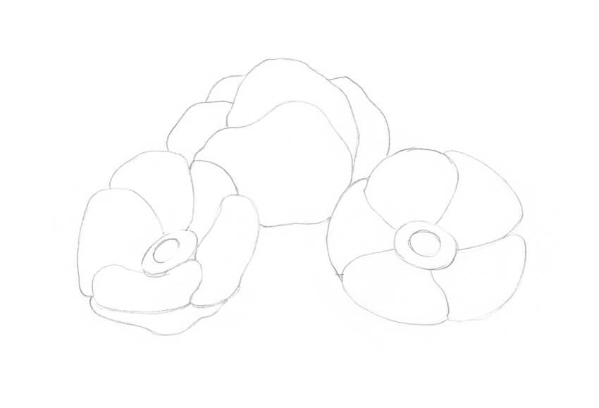 Adding more petals