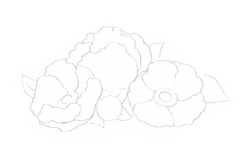 Changing the contour lines of the petals