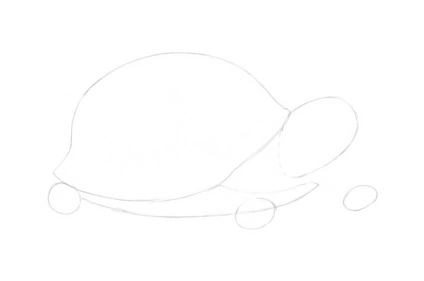 Drawing the lower shell