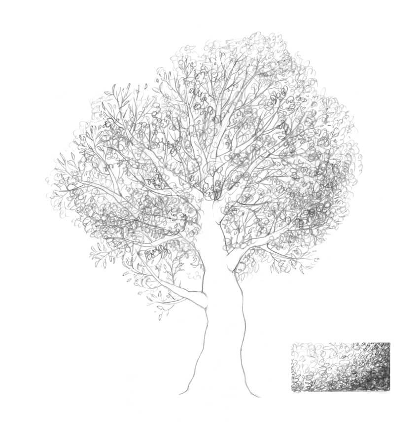 Creating an illusion of foliage