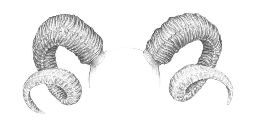 Increasing the contrast in the upper part of the drawing