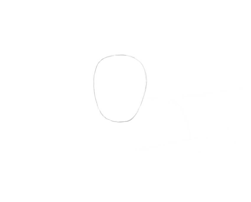 Drawing the rough shape of the head