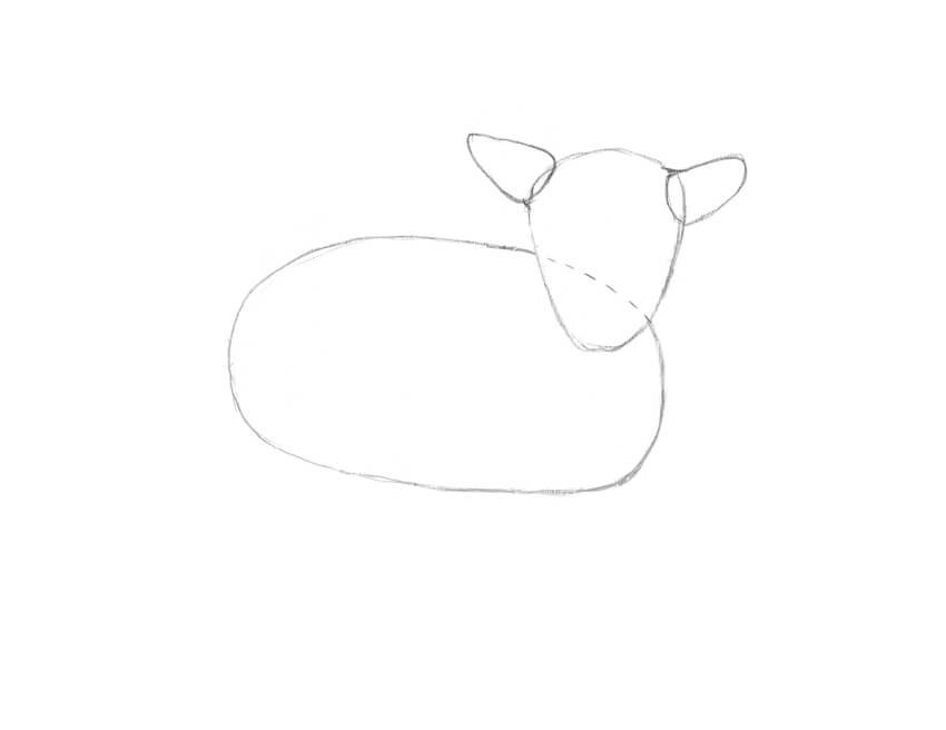 Drawing the rough shape of the body