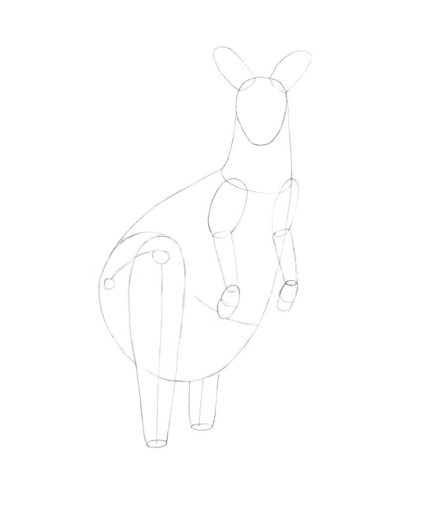 Refining the hind legs