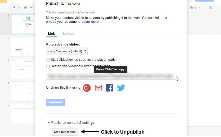 Publish to the Web Dialog Box After Publication