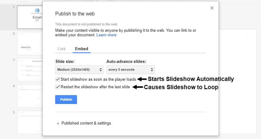 Publish to the Web Dialog Box Check Box Selections