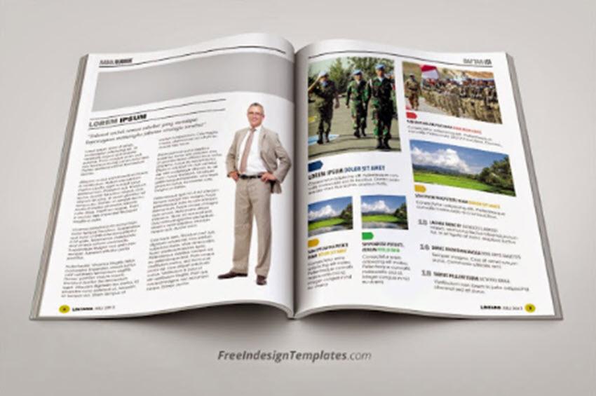 Free-InDesign Magazine Catalog