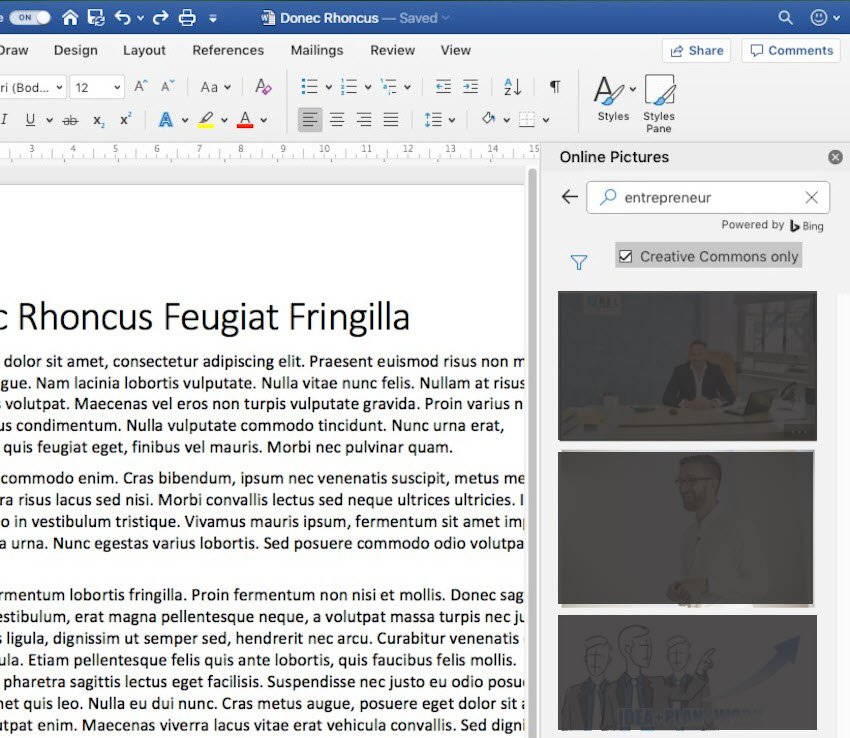 Insert Picture in Word - Online Pictures