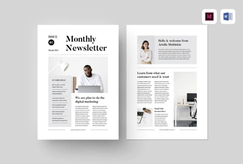 Premium newsletter template for Word, Elements