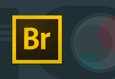 Preview for Adobe Bridge for Photographers