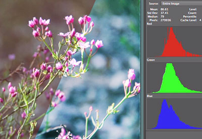 Preview for Manipulating Color For Photography