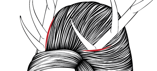 Line Art Hair : Creating a stylish line art portrait with illustrator cs