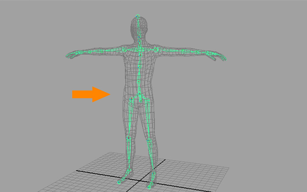 Building A Complete Human Character Rig In Maya