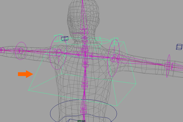 Building A Complete Human Character Rig In Maya, Global