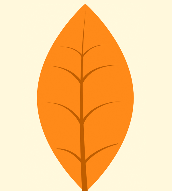 add veins to the leaf using strokes of pencil tool