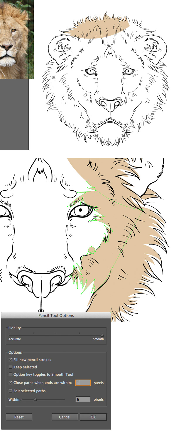 use the pencil tool to color the mane
