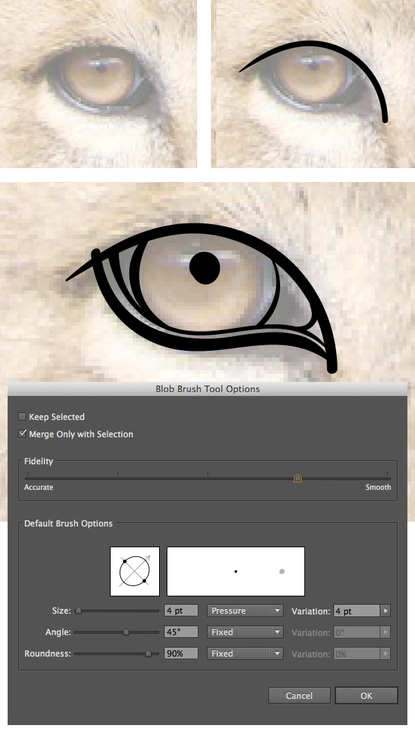 start drawing the eye with the blob brush tool