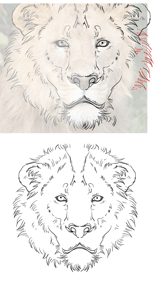 redraw the mane