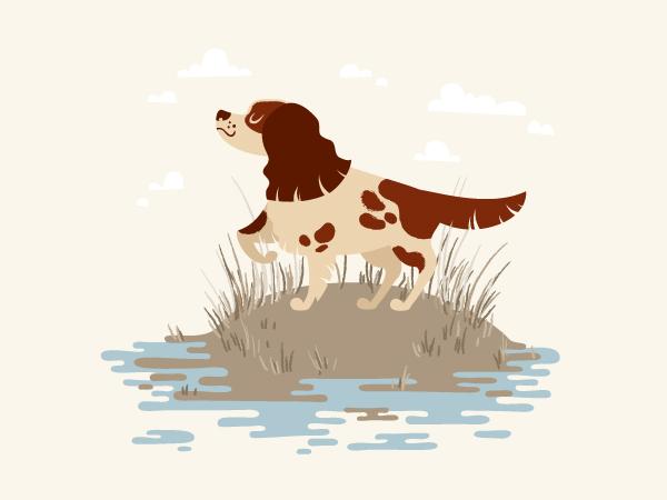завершена иллюстрация мультяшного охотничья собака-спаниель