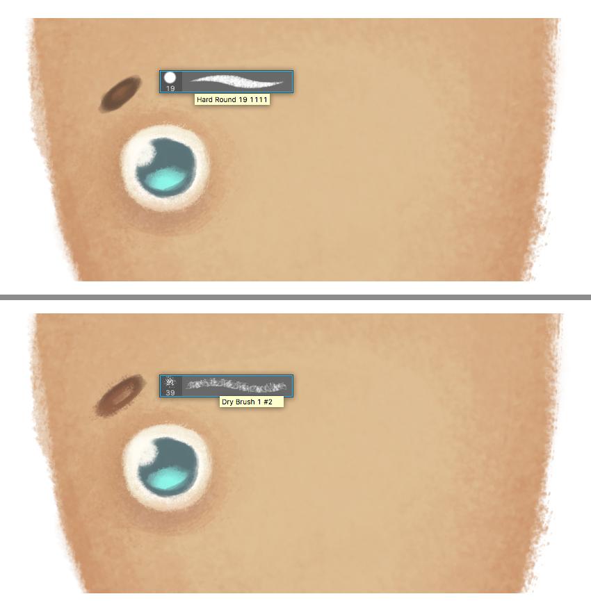 form the eyebrow