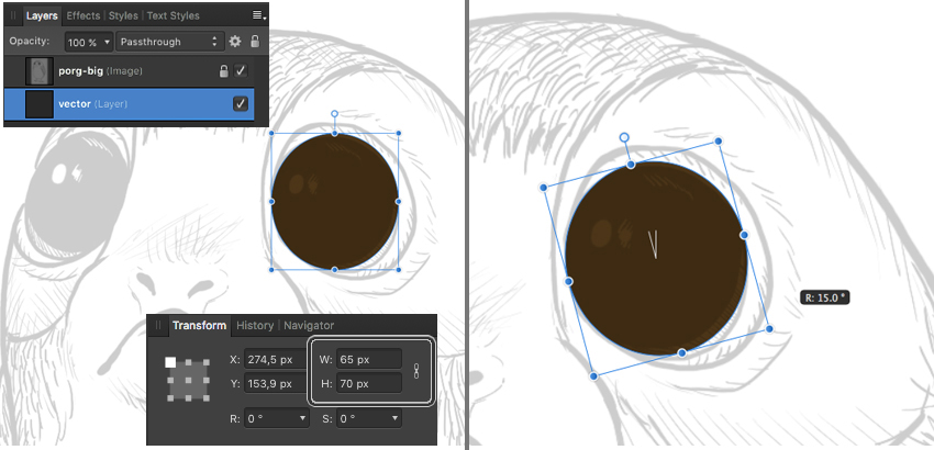 use ellipse tool