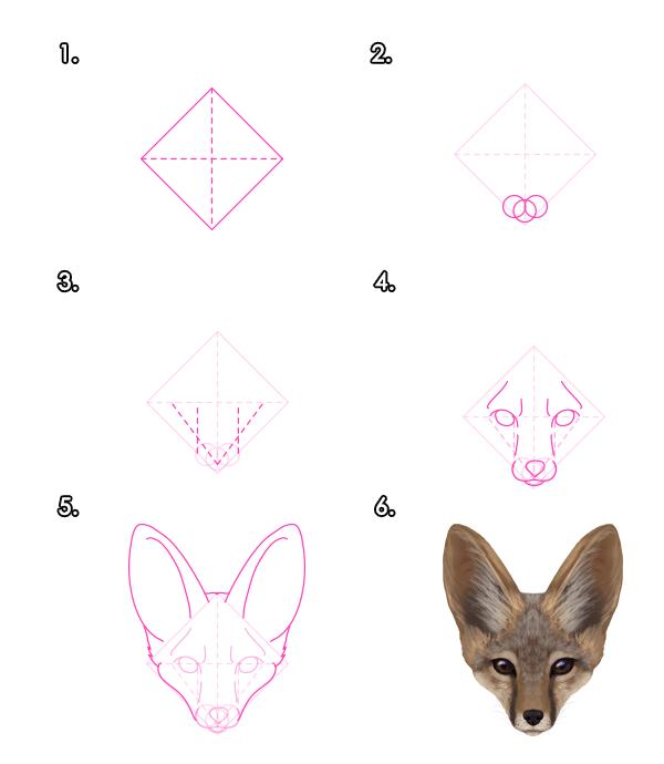 Cómo Dibujar Animales Zorros