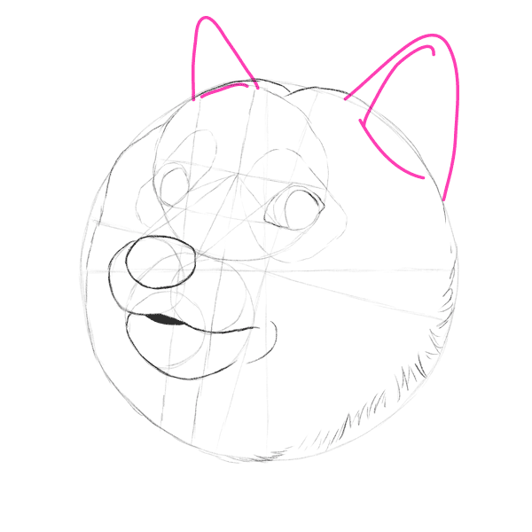 Such Tutorial, Many Fun: How to Draw Doge!