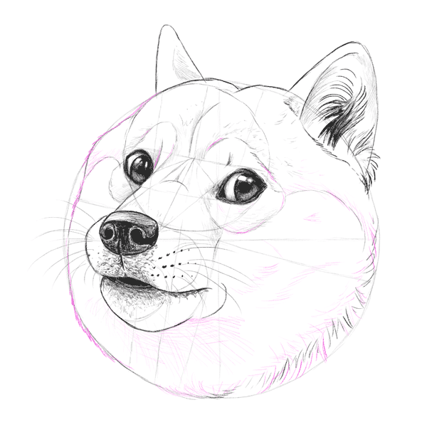 howtodrawdoge 2 5 head shading2 such tutorial, many fun how to draw doge!