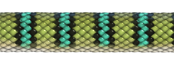 bandes croisées de serpent